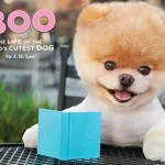 Boo: Life of the Dog Book