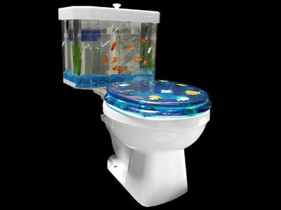 Toilet-Fishbowl