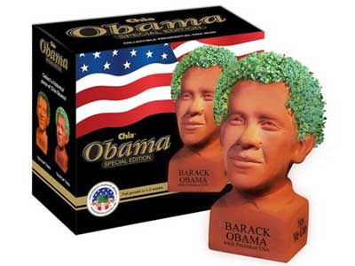 Image result for obama chia pet