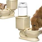 Pet Toilet Dish