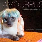 Cat Wig Book