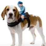 Mailman Dog Rider